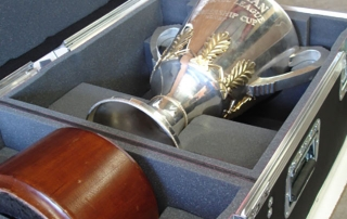 Flight Panel Trophy Case