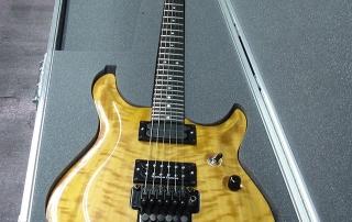 Guitar Case Foam